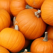 Seasonal Eating tips: What are the Health Benefits of Your Favorite Fall Foods?