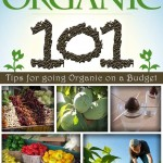 The book 'Dirt Cheap Organic; 101 Tips for Going Organic on a Budget.' Click here for more info.
