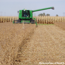 University Study in Iowa Finds that Non-GMO Crop System Boosts Yields, Improves Soil Quality With Far Less Herbicides and Fertilizers