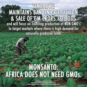 Photo from the Facebook page GMO Free USA (click to see their page).
