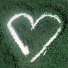 The Top Six Health Boosting Benefits of Spirulina Include Pancreatic Cancer Protection, Heavy Metal Detox and More