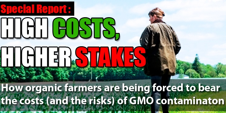 Contamination from Monsanto and other companies' genetically modified crops has made it virtually possible for organic farming to coexist in many areas across the United States and other countries where GMOs are being grown.