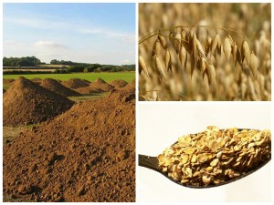 Nature's Path is buying and converting farmland to grow crops such as oats for its cereals.