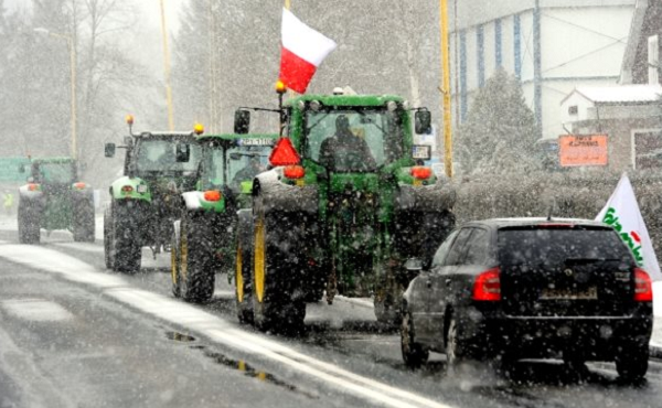 Polish farmers are rising up against GMOs.