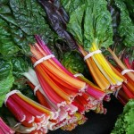 chard is healthier than kale