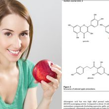 An Apple a Day Keeps Cancer Away (There is one particular part of the apple you HAVE to eat!)