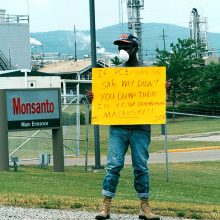 New Federal Study Links Monsanto Chemicals to Widespread Liver Disease in Poisoned Southern Town (Anniston, Alabama)