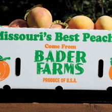 Breaking News: Missouri's Largest Peach Farmer SUES Monsanto Claiming MASSIVE Damage From Illegal Pesticide Drift