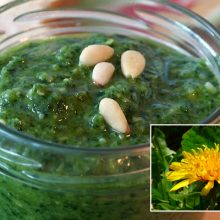 You Won't Believe What This Delicious Pesto is Made With! Main Ingredient is Found On Your Lawn.