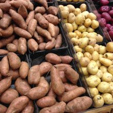 FDA Approves Three New Types of GMO Potatoes — Here's What You Must Know to Avoid Them