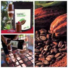 Featured Product Review: Joyfuel Cacao (Made From the Rare Criollo Bean)