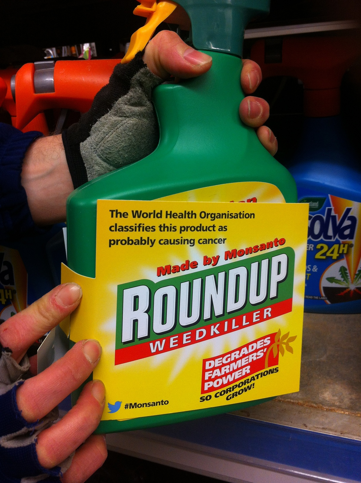 Roundup cancer