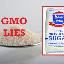 U.S. Sugar Companies Side With Monsanto, Begin Targeting Moms in Multi-Million Dollar GMO Propaganda Campaign