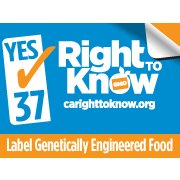 Interview: GMO Labeling Campaign's Malkan on the Latest Polls, Opponents' Lies and Much More