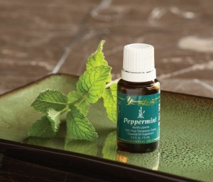 Peppermint oil is one of the best natural ways to freshen breath, and only a few drops are needed. Click the picture to see what brand we recommend.