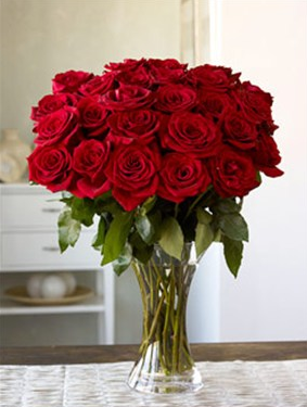 You could support the Amazon Rainforest by buying a bouquet of these.