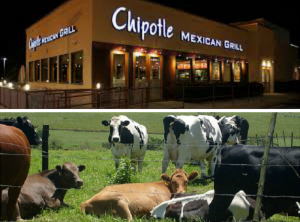 Chipotle will reportedly begin sourcing grass-fed, healthier beef from Australia.