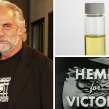 """Tommy Chong of 'Cheech & Chong' Fame: """"I'm Cancer-Free"""" Thanks to Hemp Oil and the Right Diet"""