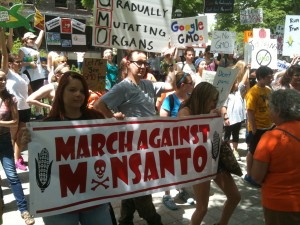 The grassroots movement against GMOs, and the lack of transparency that comes with them, has become strong in America.