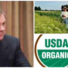 """Recent Power Grab by the USDA Could """"Seriously Threaten"""" Organic Standards, Groups Allege in Legal Petition"""