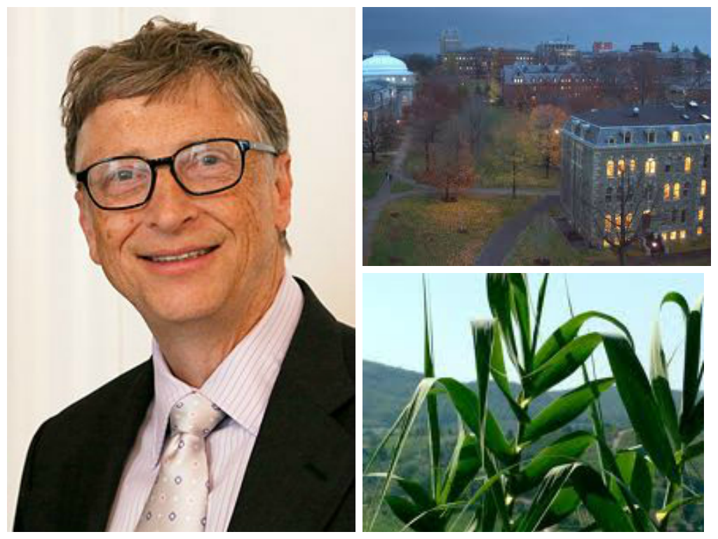 "The Bill & Melinda Gates Foundation will donate almost 6 million to ""depolarize"" the GMO debate."