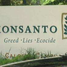 """Say No to GMO!"" New York Group to Host 'Organic Thanksgiving' Event on Monsanto's Front Lawn"