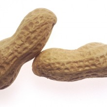 Researchers in Australia Say They May Have Found a Simple Natural Cure for Peanut Allergies in Kids