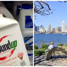 Mainstream Media Afraid to Air Monsanto's Dirty Laundry? One Story Goes Viral, the Other Goes AWOL
