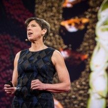 """TEDx Cracks Down on """"Anti-GMO Foodists,"""" Aligns Itself With Monsanto-Funded Researcher"""