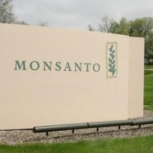 Report: Monsanto CEO Says His Company May Be Considering a Name Change, But What's the Real Reason For It?