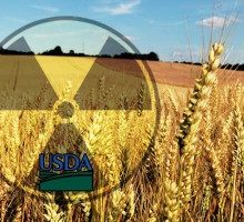"""Organic"" Wheat That's Not Organic After All: The USDA's Dirty Little Secret"