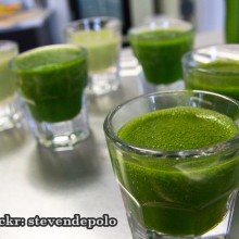 History of Wheatgrass: Research Halted by the Pharmaceutical Industry in 1940s