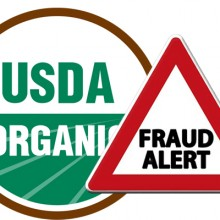 Watchdog Group Alleges Organic Fraud by the USDA, Demands Change