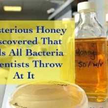Mysterious Honey Discovered That Kills All Bacteria Scientists Throw At It