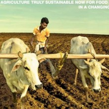 """""""Wake Up Before It's Too Late:"""" United Nations Report Calls for Dramatic Shift Back to Organic Agriculture"""
