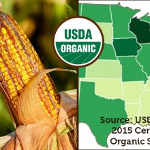 U.S. Hits Record 4.4 Million Acres of Organic Farmland, (20% Increase). These 8 States Are Leading The Way