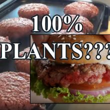 "The Future Is Here: Vegans Can Now Eat a Plant Burger That ""Bleeds."" But There Is A Catch…"