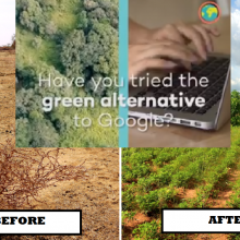 Alternative Search Engine Plants Millions of Trees and Doesn't Censor Content Like Google