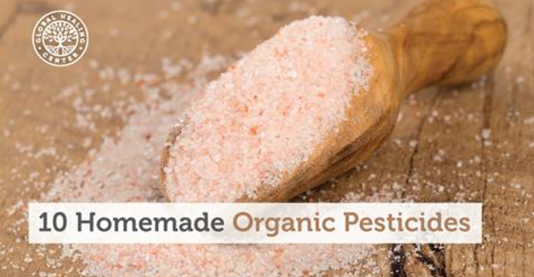 10 Homemade Organic Pesticides to Use
