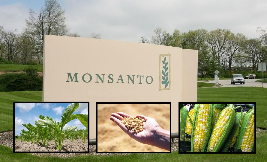 monsanto gmos to avoid