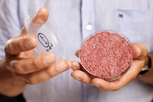 cultured beef lab grown