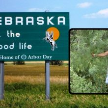 Nebraska Woman Travels Countryside, Exposes the Hidden Truth About Cannabis Plants That's Been Covered Up For Decades