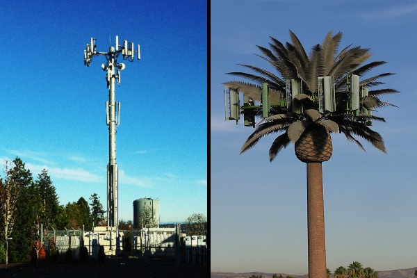 cell tower hidden