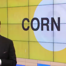 Audience Stunned  as Dr. Oz Does a Complete 180, Promotes GMO Food Company on Popular TV Show