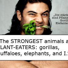 """""""Germany's Strongest Man"""" on How He Switched to a Fully Vegan Diet (and Proved All the Doubters Wrong)"""