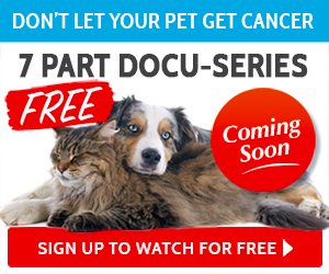 truth about pet cancer dvd
