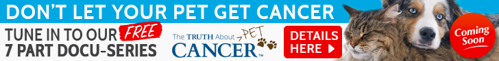 pet cancer