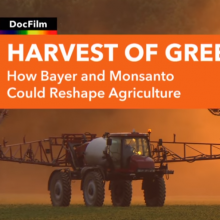 'Harvest of Greed:' A Must-Watch New Film About the Monsanto-Bayer Merger