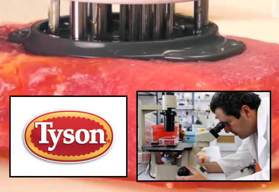 tyson foods chicken gmo lab beef