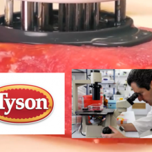 Largest U.S. Meat Producer (Tyson Foods) Invests Over $2 Million in Lab Grown Meat From Israel